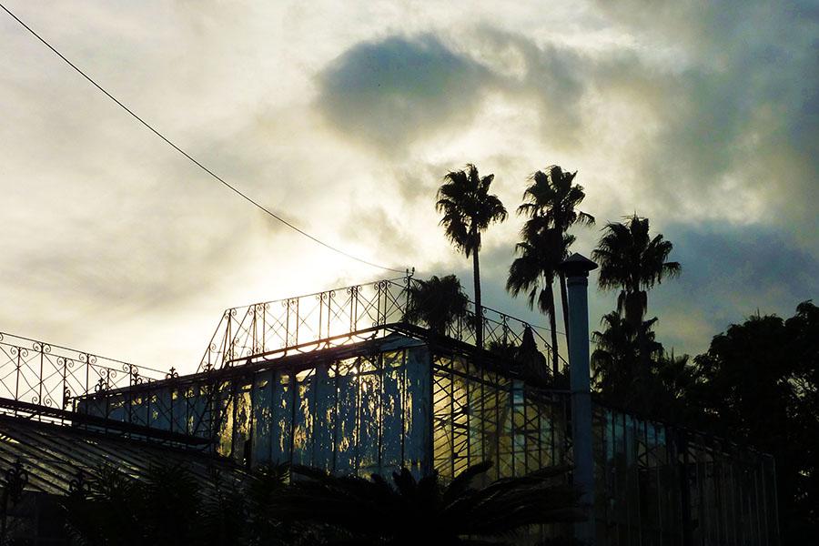 Jardin Tropical Belem
