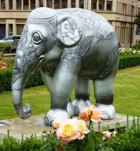 elephant luxembourg
