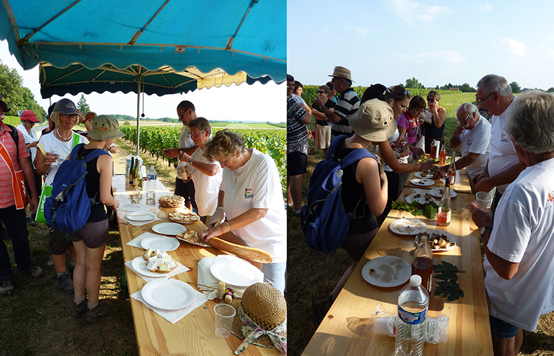 touraine-mesland vignes vins et randos