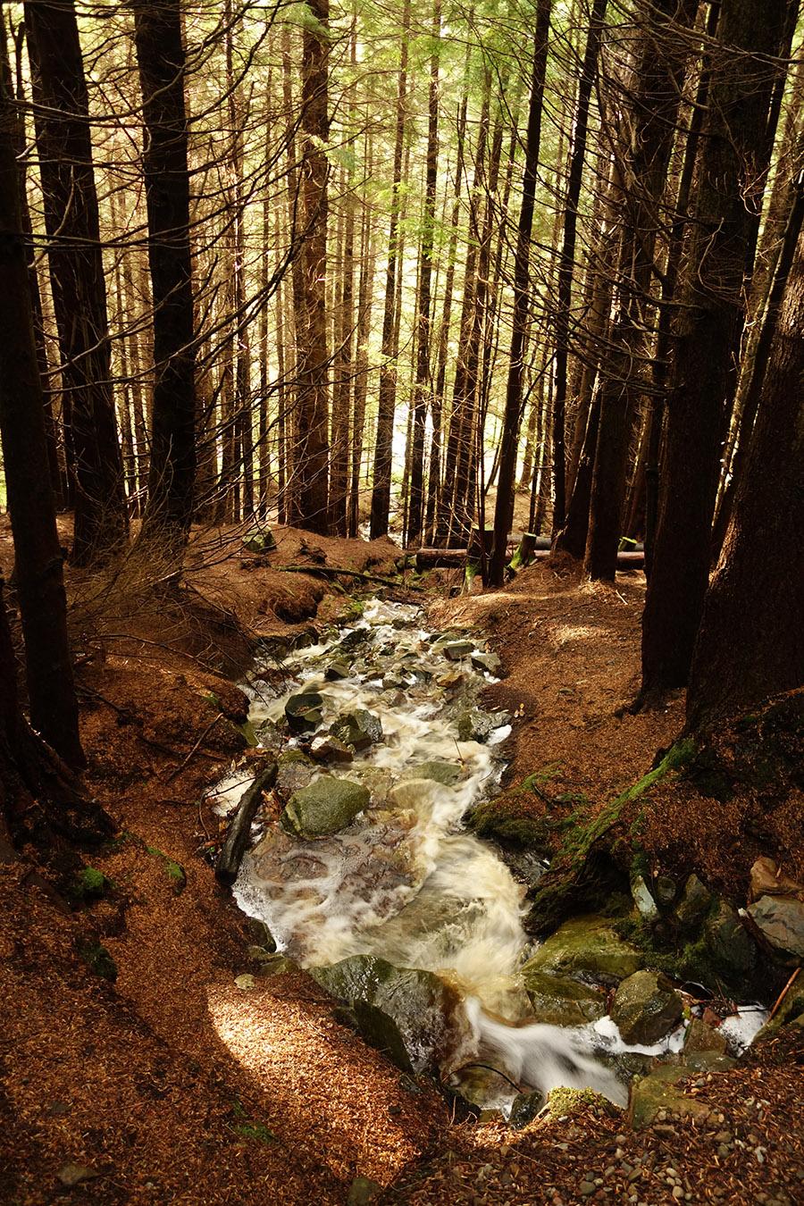 ecosse glencoe lochan trails