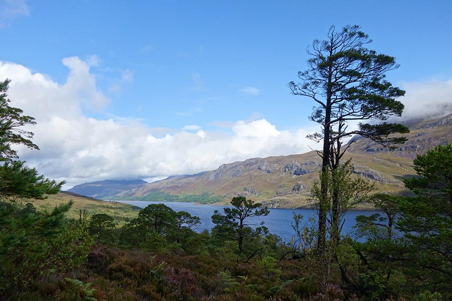 Jour 6 – Loch Maree – Inverewe – Ullapool