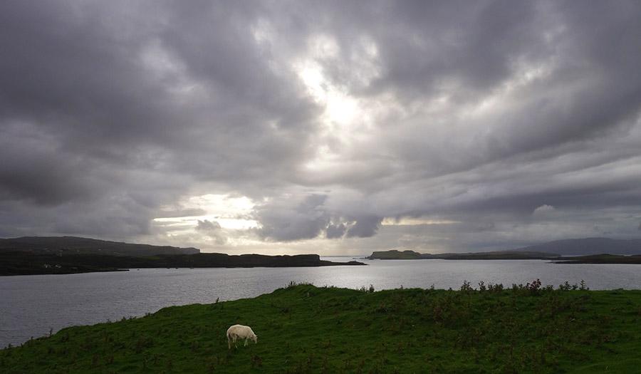 ecosse skye mouton