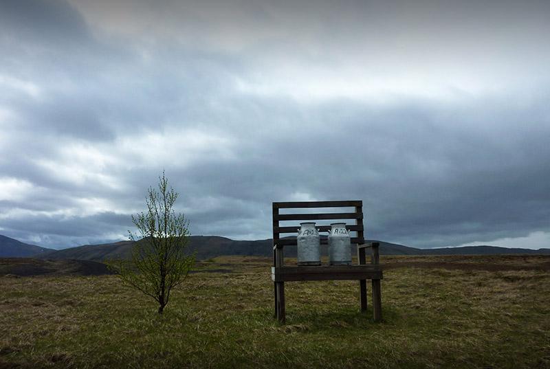 banc bidon lait le long de la 264 en islande