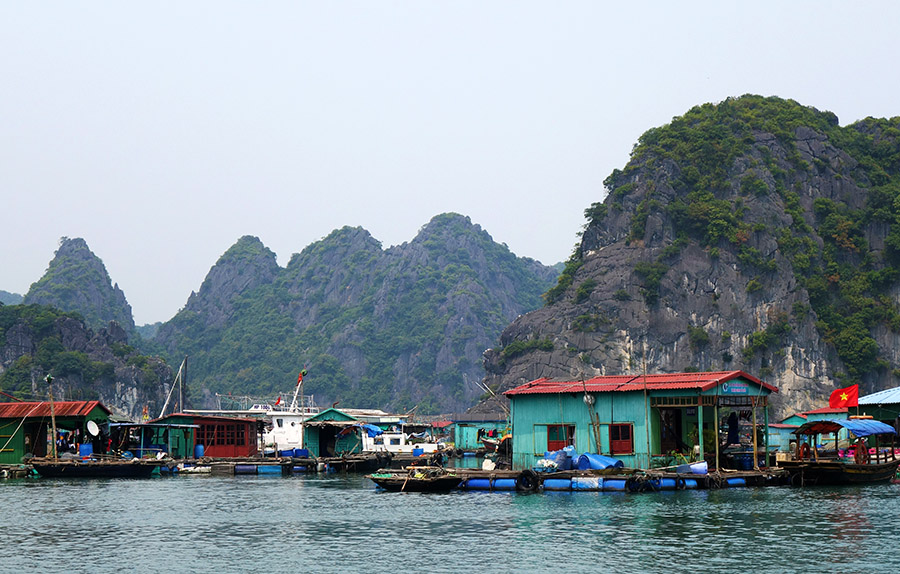 vietnam cat ba village flottant