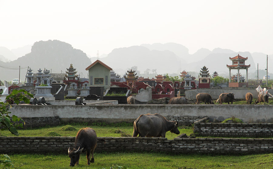 vietnam tam coc cimetiere