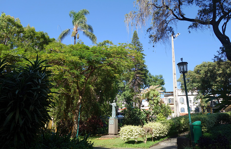 jardim municipal do funchal madere