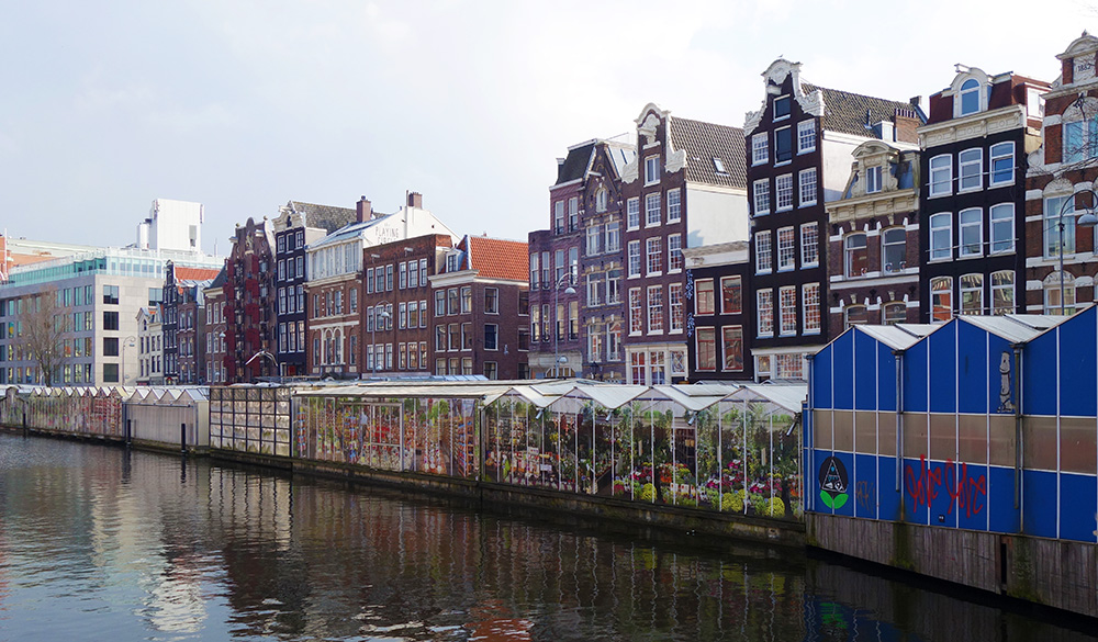 amsterdam bloemenmarkt marche fleurs