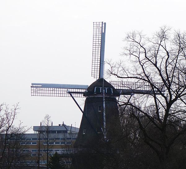 amsterdam moulin de bloem