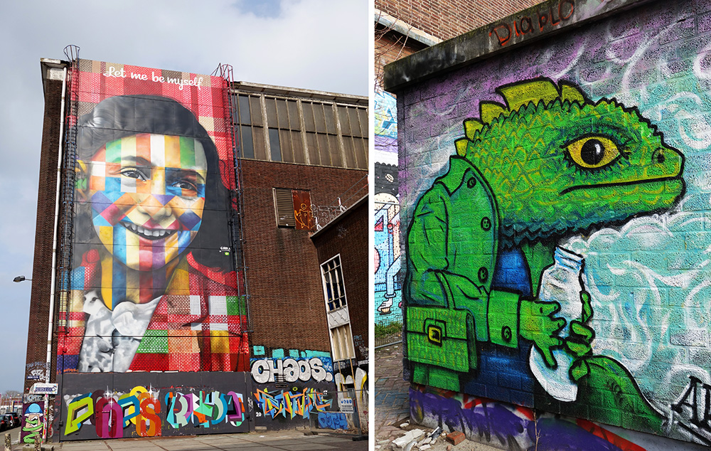 amsterdam noord ndsm loods entrepot street art