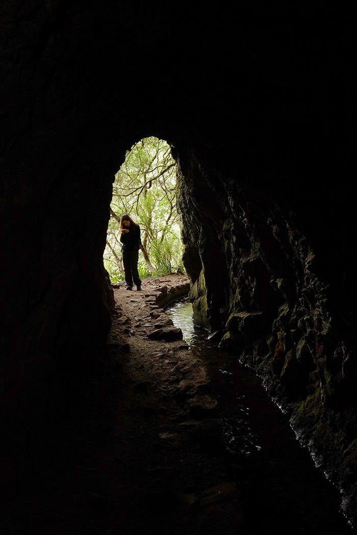 madere caldeirao verde randonnee levada tunnel