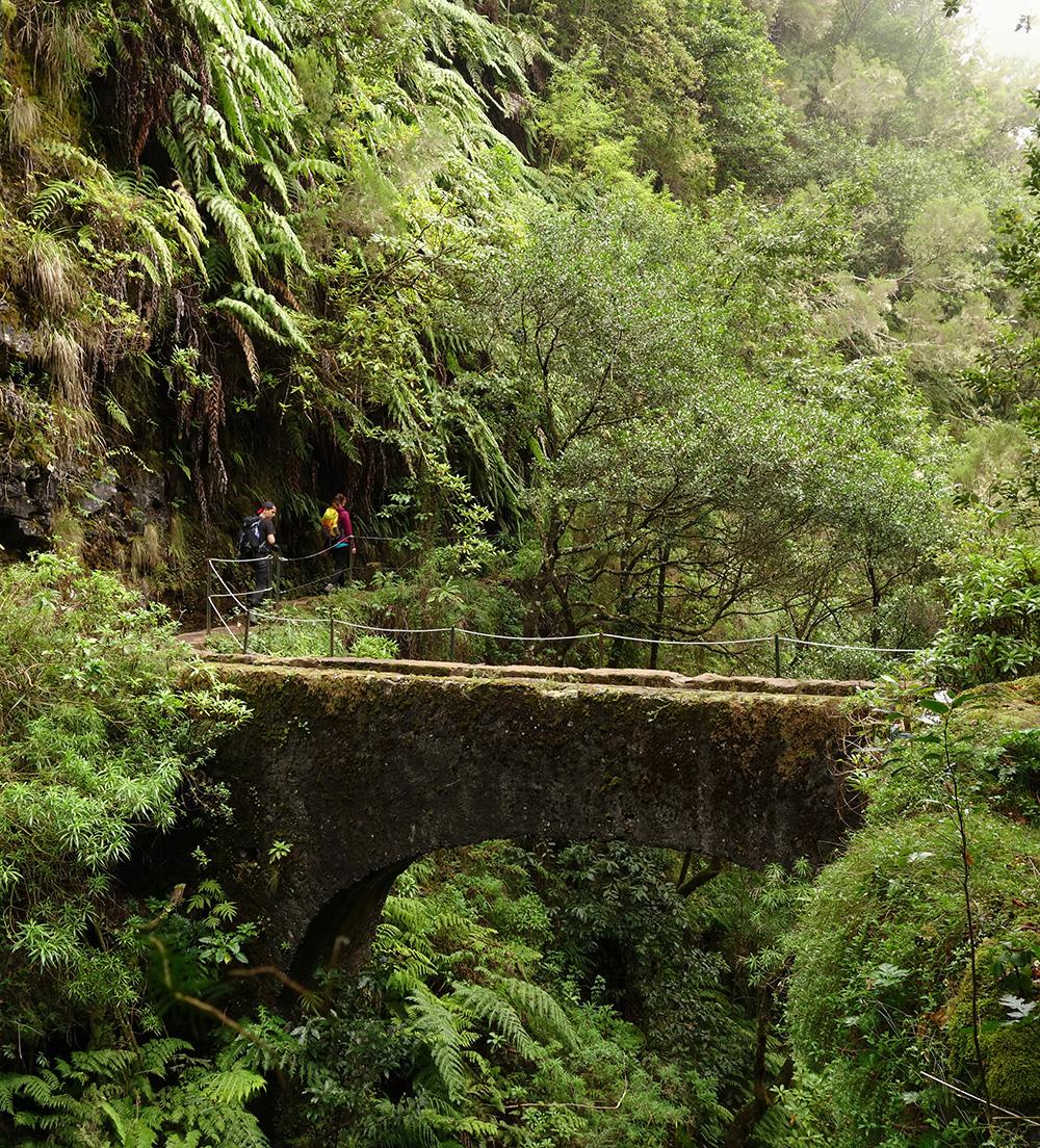 madere caldeirao verde randonnee levada pont