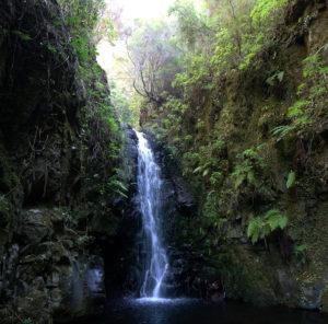 madere levada rocha vermelha randonnée cascade