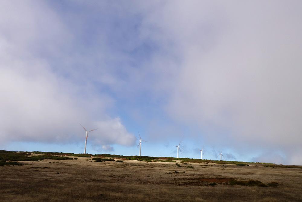 madere plateau paul da serra eoliennes