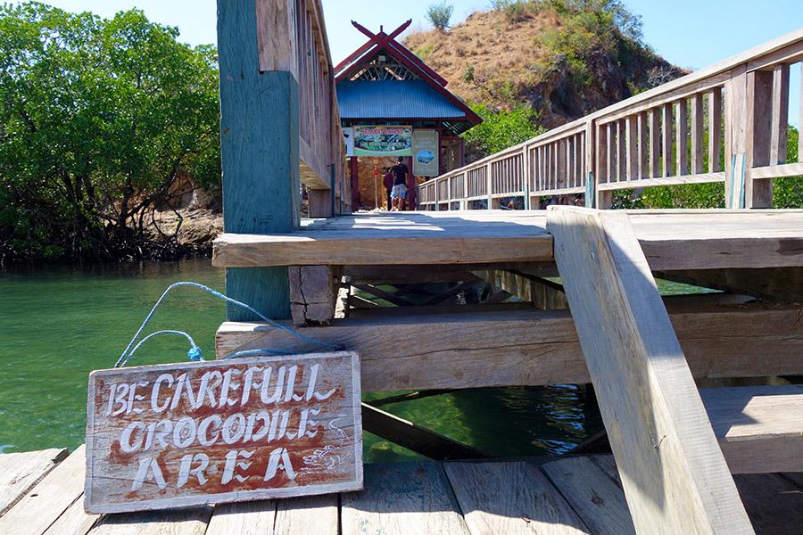 indonesie rinca komodo crocodile