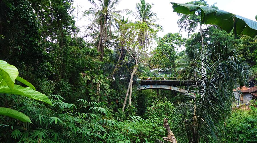 indonesie bali ubud pont