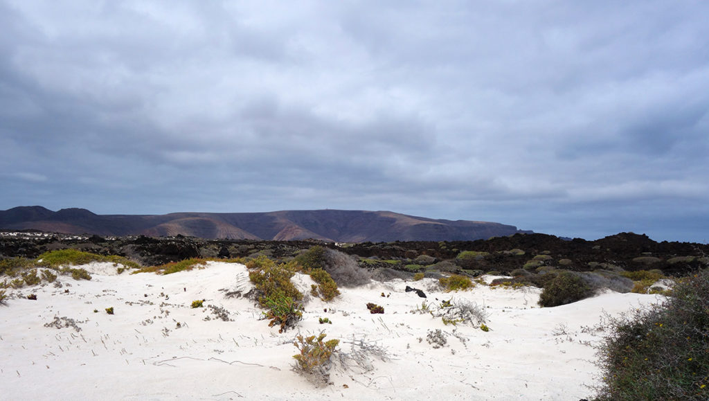 canaries lanzarote caleta mojon blanco plage playa sable