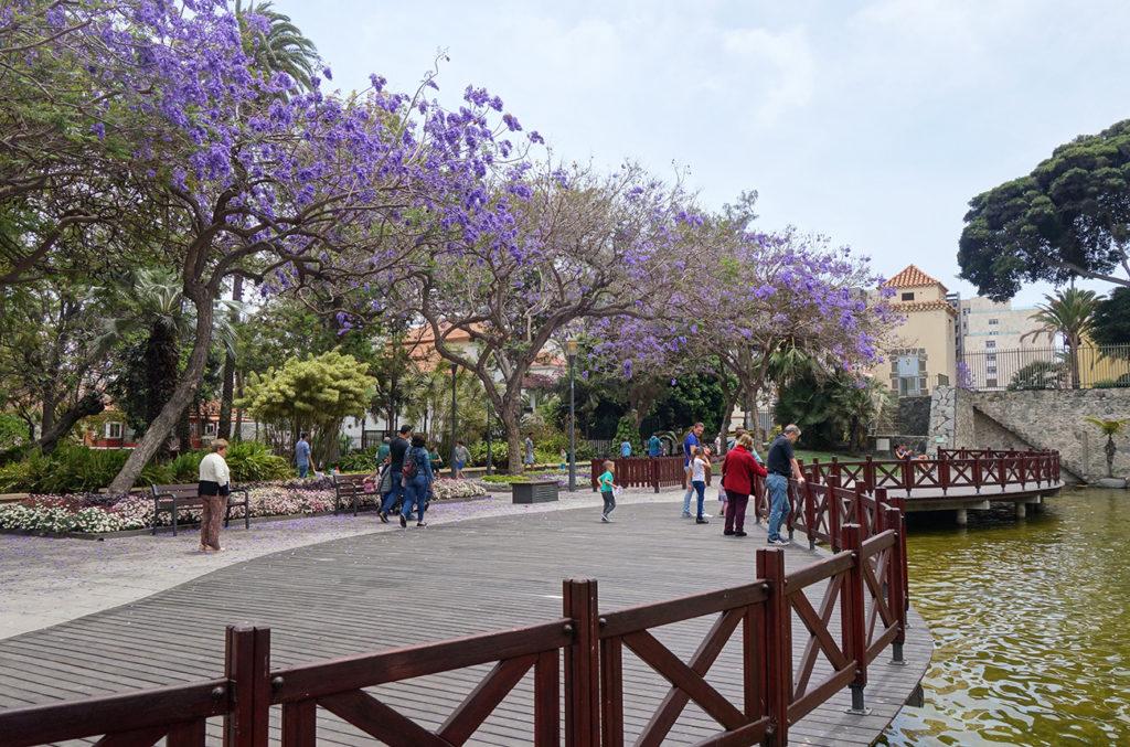 canaries gran canaria las palmas ciudad jardin parc parque doramas