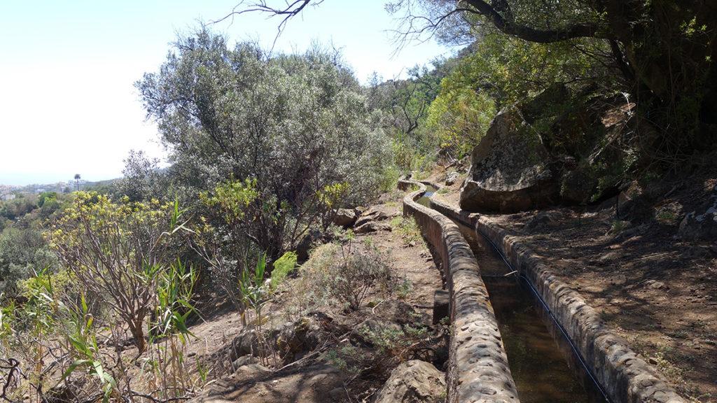 gran canaria canaries barranco de los cernicalos randonnée rando trekk balade nature levada