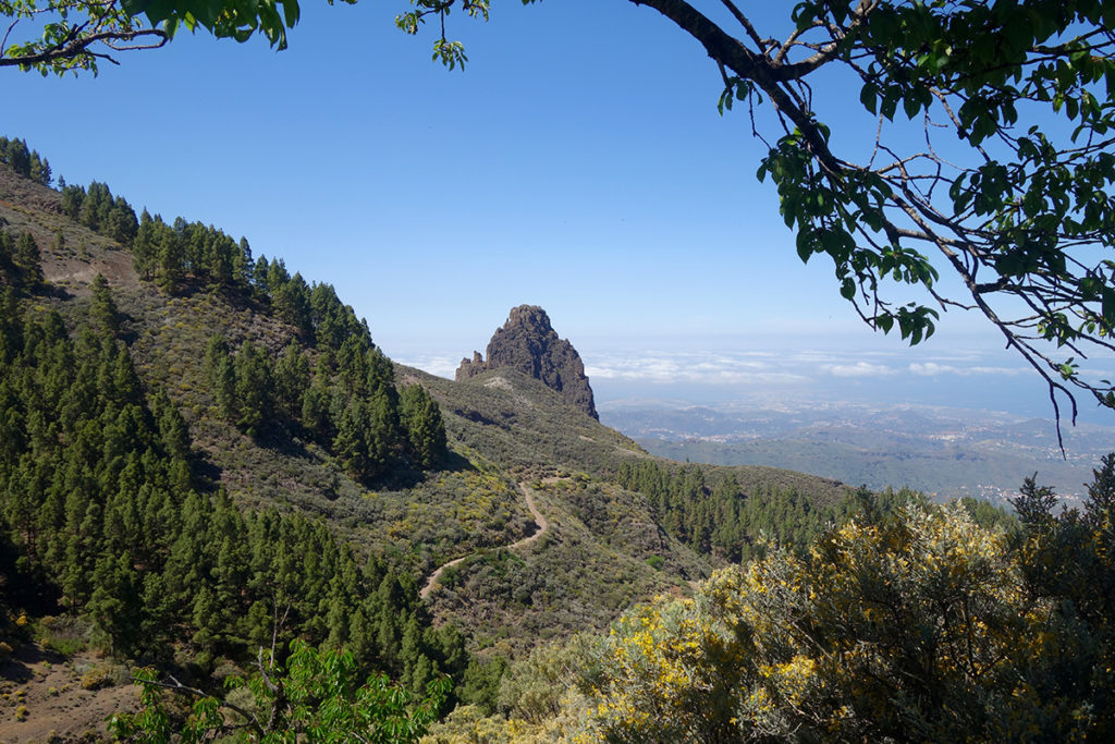 canaries gran canarie caldera los marteles caldeira nature paysage