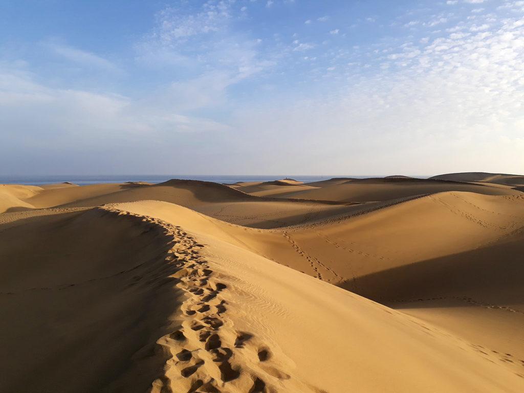 gran canaria maspalomas dunes sand parc nature