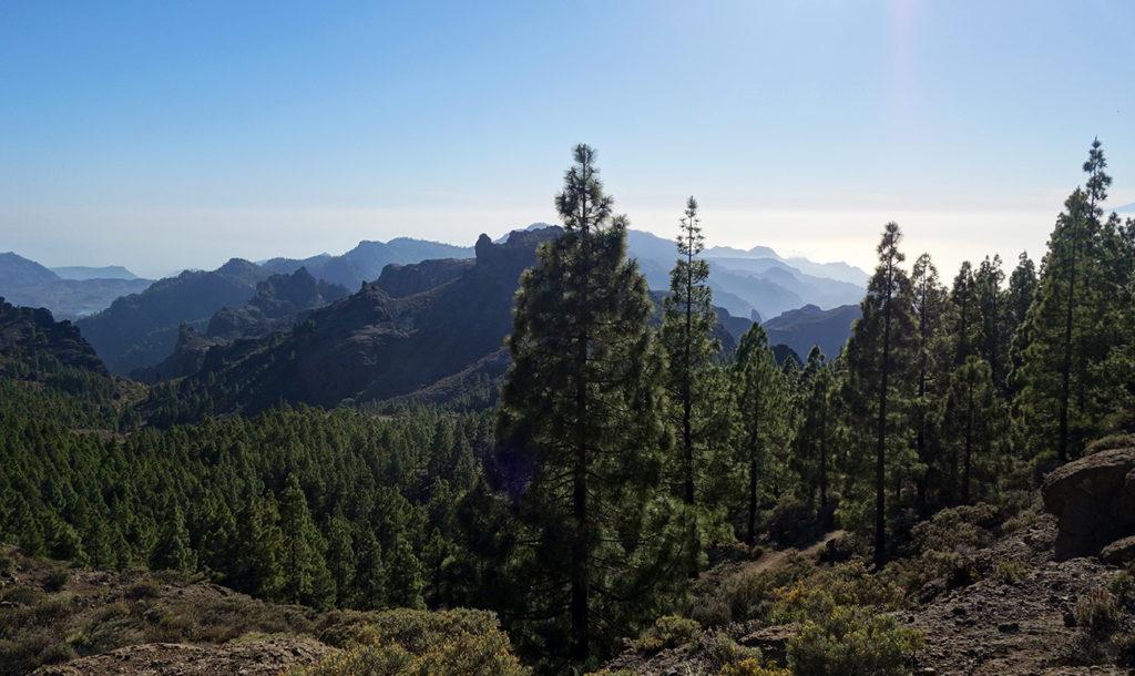 gran canaria canaries roque nublo nature paysage nature balade rando